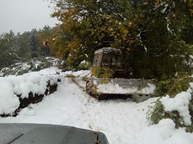 sneg-radocelo